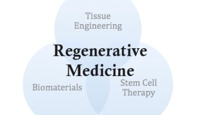 An image about major areas under Regenerative Medicine