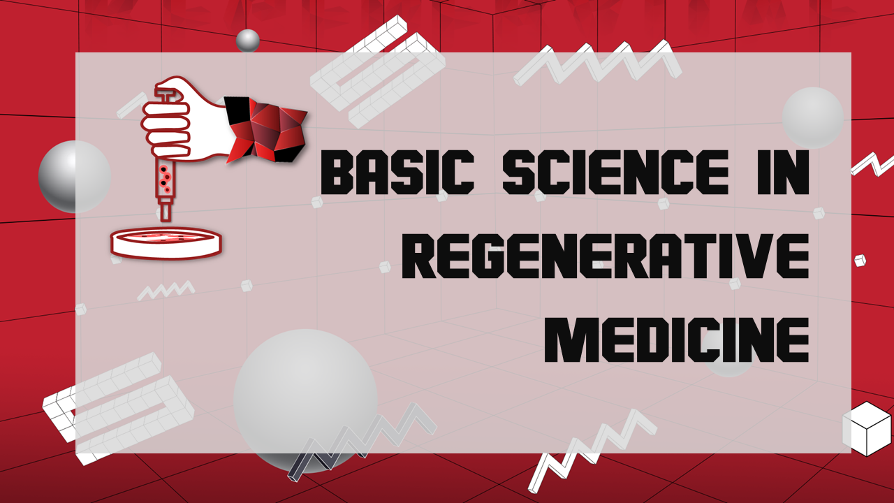An image about basic science in regenerative medicine