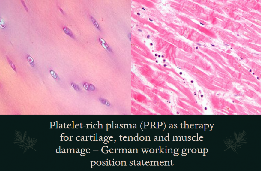 Platelet-rich plasma (PRP) as therapy for cartilage, tendon and muscle damage – German working group position statement
